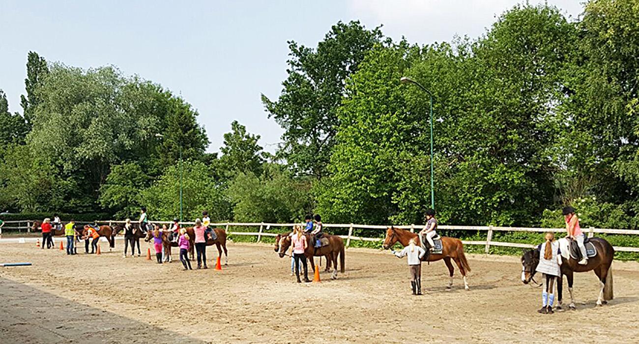 Paardrijles buitenles