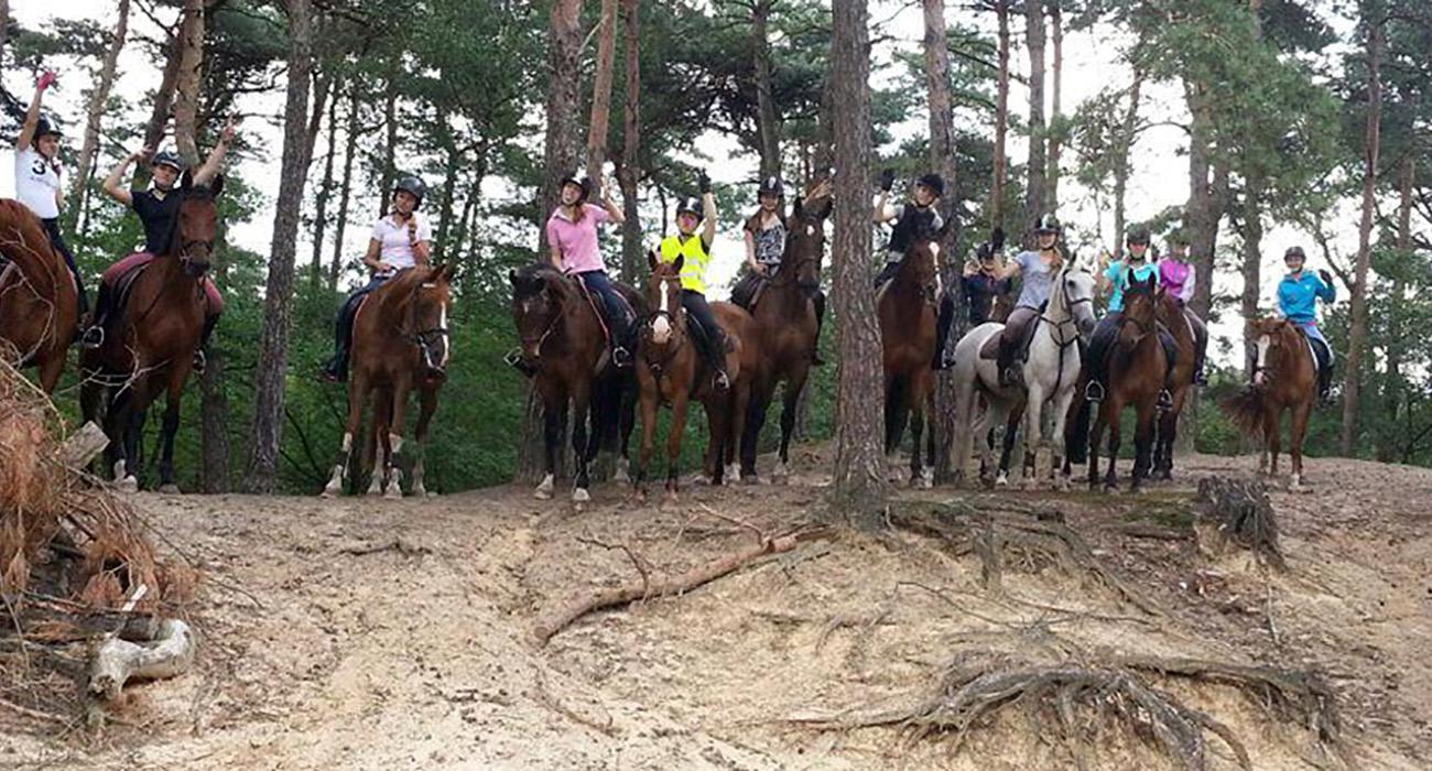 Paardrijlessen buitenrit in bossen