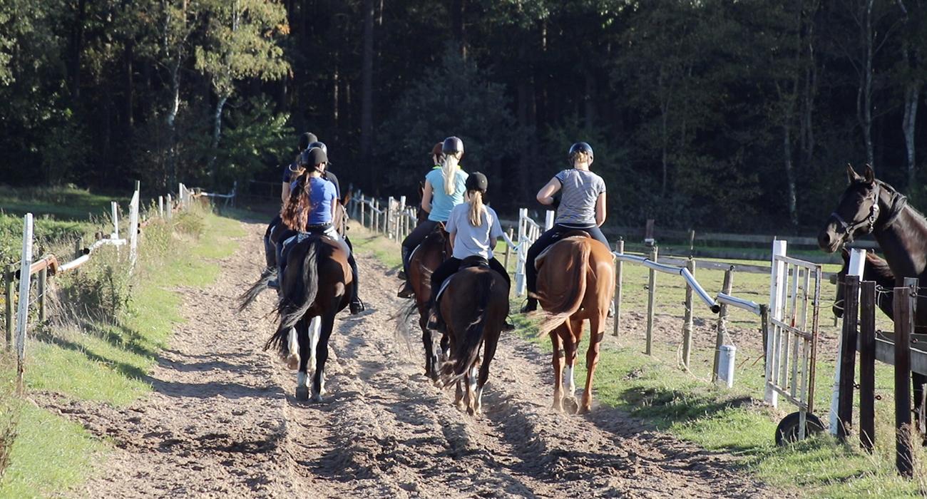 paardrijlessen buitenrit